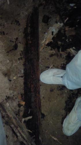 風呂場シロアリ被害2